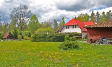 Atrakcje dla gości,Noclegi na Mazurach - Chmielewo, Ruciane Nida